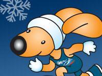 Продажа билетов на соревнования «Русская зима» — 2008