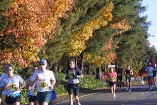 Наши марафонки вновь на пьедестале